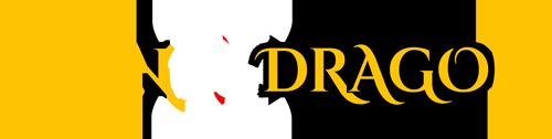 Twin Dragon Martial Arts Club